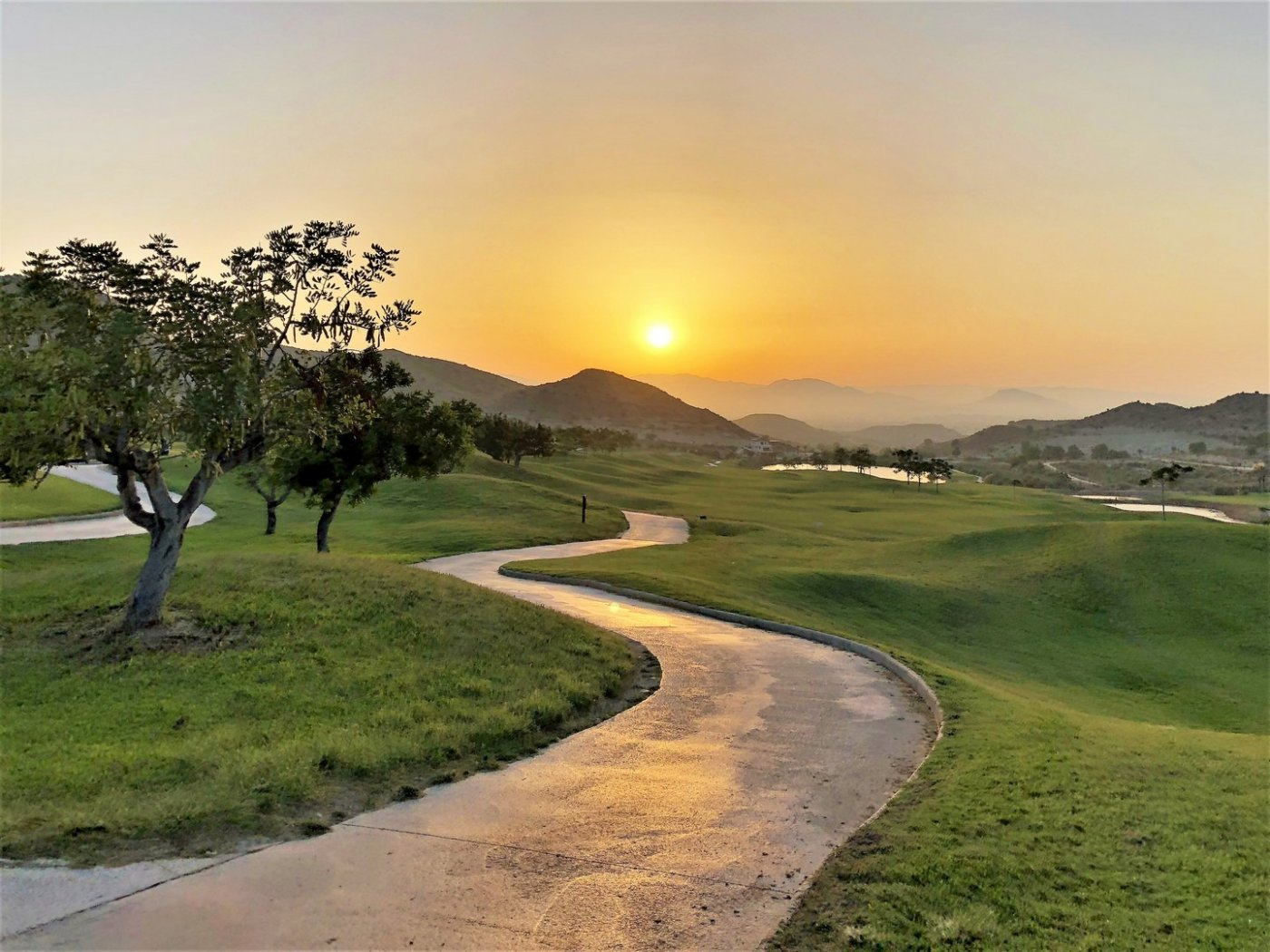 Villas en primera lÍnea de golf en font del llop - imagenInmueble13