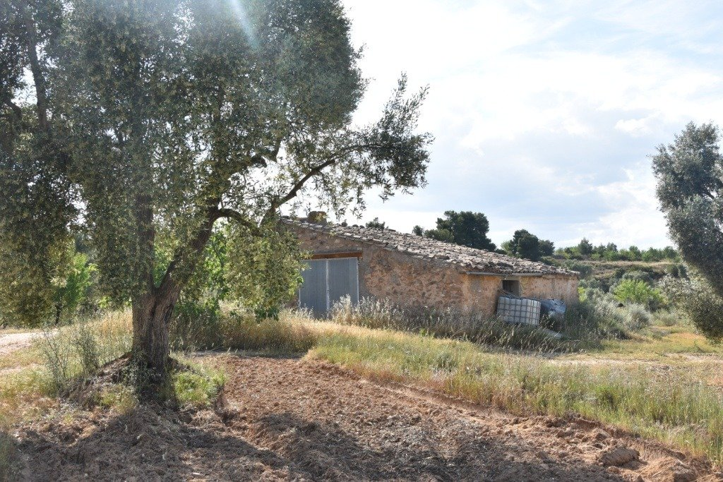 Apartamento, Mazaleón, Venta - Teruel (Teruel)
