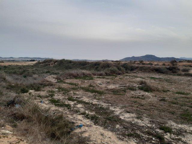 terreno-rural en novelda ·  39900€