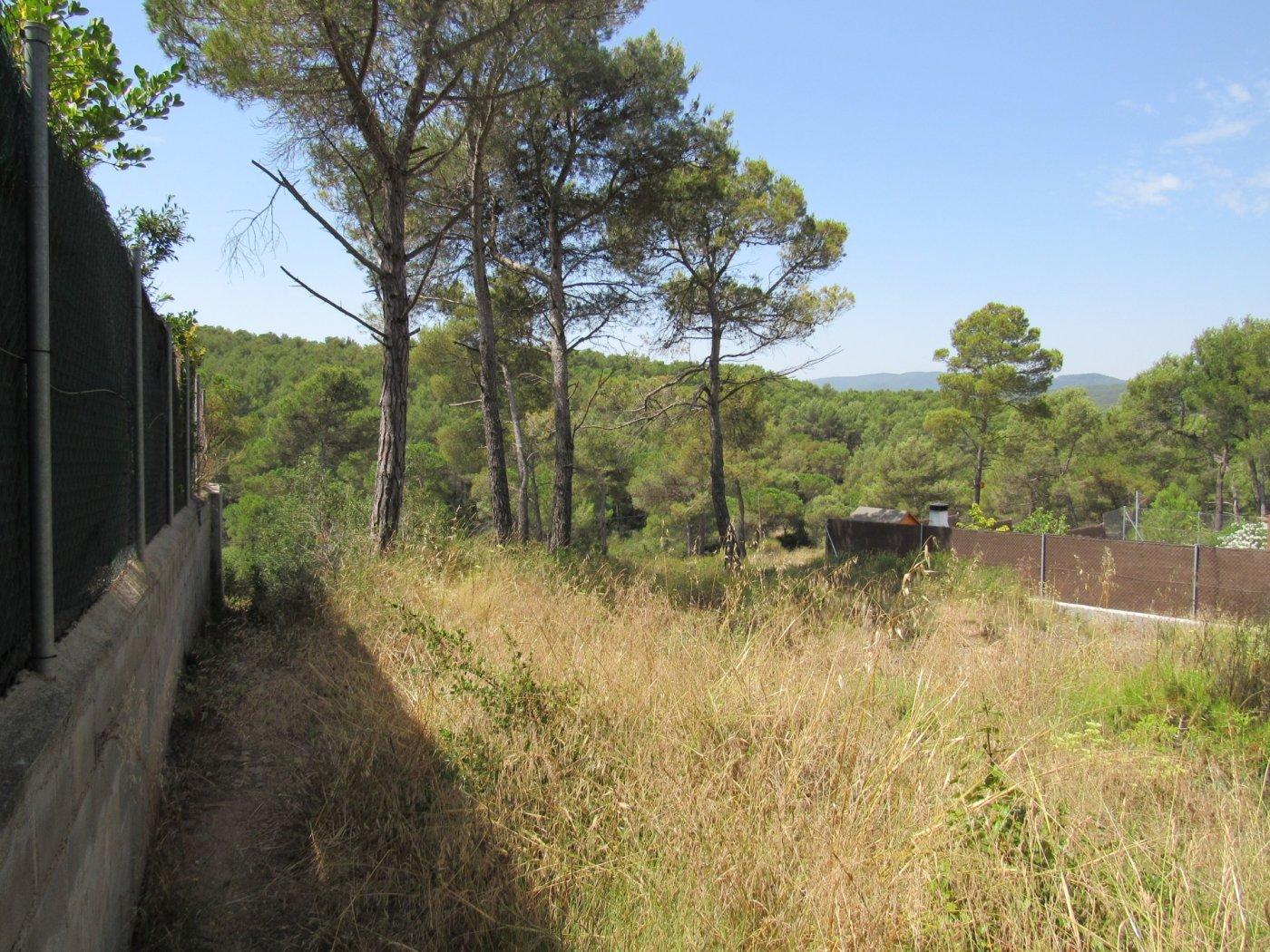 terreno-urbano en mediona · urb-la-font-del-bosc 35000€