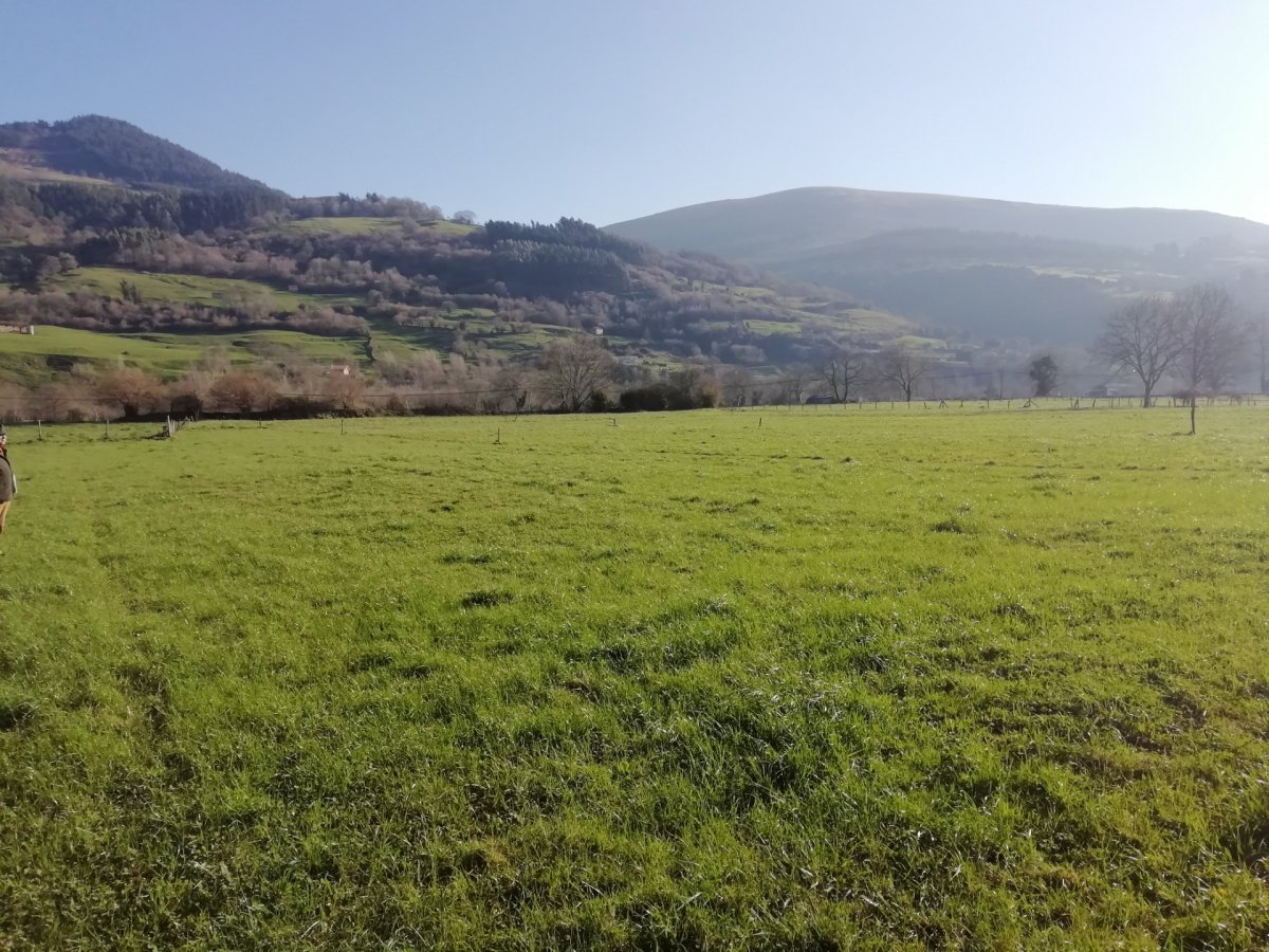 Terreno urbano en venta en Corvera de Toranzo  de 1.606 m2 por 69.000 €.