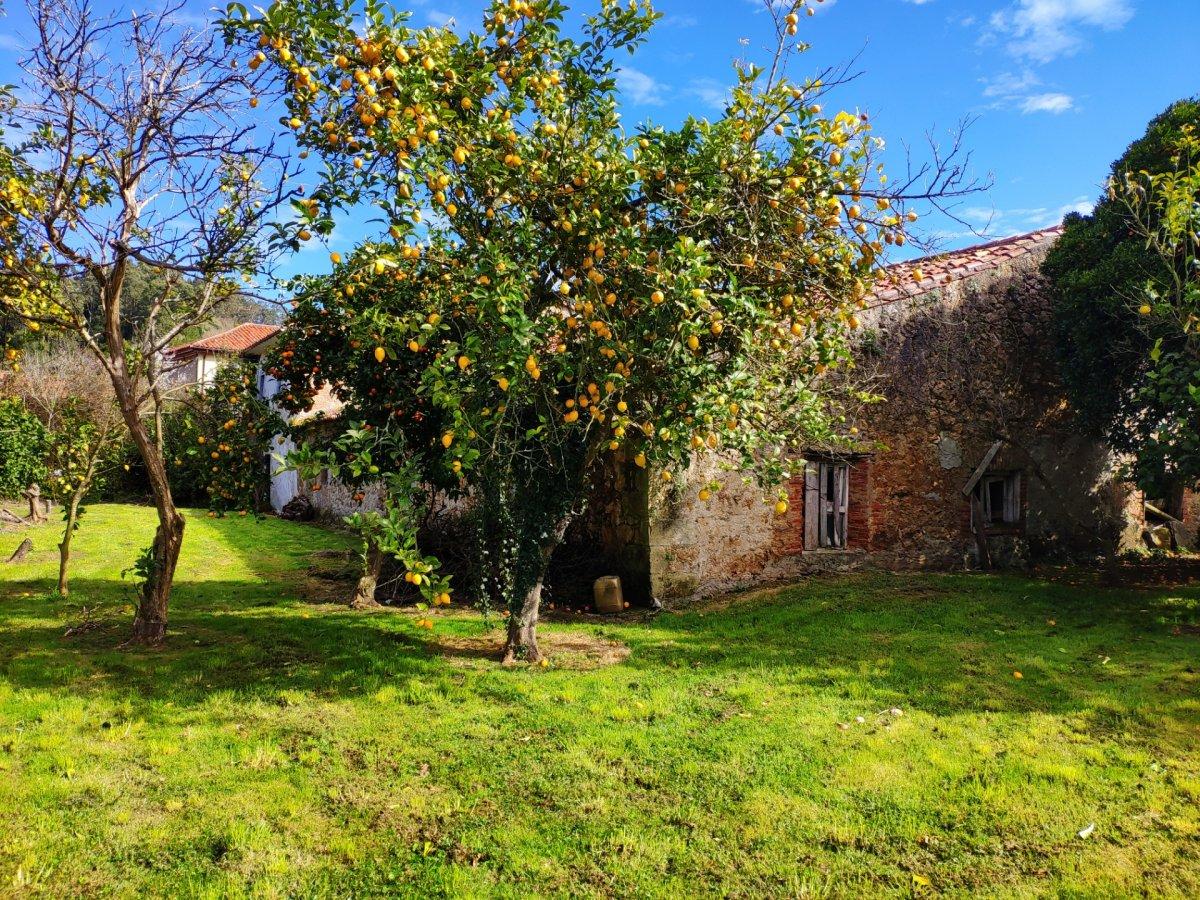 Casa Con Terreno en Alfoz De Lloredo - CANTABRIA