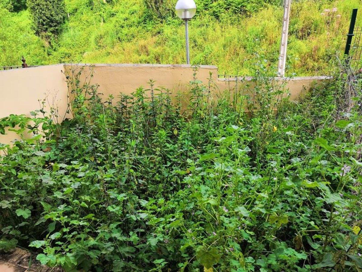Planta baja en Pielagos - CANTABRIA