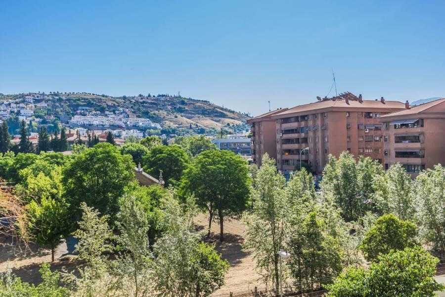 Alminares Granada